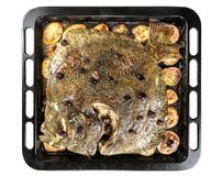Turbot fish in baking pan oven with potatoes olives and aromatic stock images