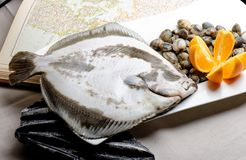 Turbot fish and clams Royalty Free Stock Image