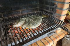 Turbot on the grill Stock Images