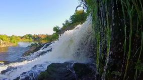 Turbulent waterfall splashing against rocks, river, wild nature. Stock footage stock video