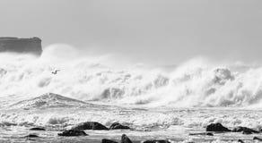 Turbulente Wellen an der Küste Stockfotos