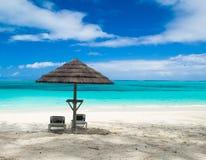 Turchi ed il Caicos Fotografia Stock Libera da Diritti