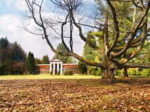 Turcianska Stiavnicka - Massive tree and Arboretum Stock Photos