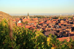 Turckheim, city of Alsace. City at the heart of the vineyard of Alsace Stock Photography