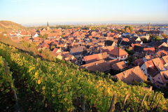 Turckheim, city of Alsace. City at the heart of the vineyard of Alsace Royalty Free Stock Images