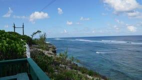 Turco magnífico en los Turks and Caicos Islands Imagen de archivo libre de regalías