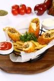 Turco Pacanga Boregi e patate fritte miste Fotografia Stock Libera da Diritti