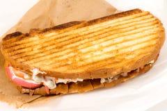 Turco tostato con fondo bianco Fotografia Stock Libera da Diritti