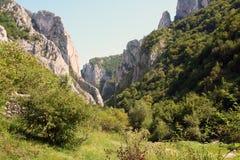 Turda峡谷 免版税库存图片