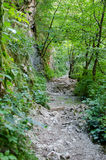 Turda Canyon Royalty Free Stock Image
