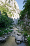 Turda Canyon Royalty Free Stock Image