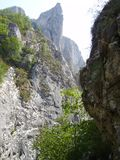 Turda canyon in Transylvania, Romania. Gorge formed through erosion. Turda Gorge Cheile Turzii in Romanian is a natural reserve situated six kilometer west of royalty free stock photography