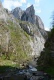 The Turda gorge. Cheile Turzii, in Transylvania, Romania royalty free stock photography