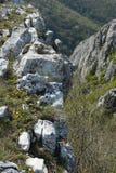 The Turda gorge. Cheile Turzii, in Transylvania, Romania royalty free stock images