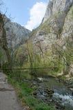 The Turda gorge. Cheile Turzii, in Transylvania, Romania stock image