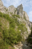 Turda Gorges, Cape Needle Royalty Free Stock Photos