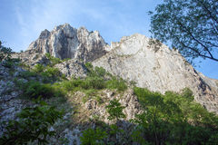Turda Gorges National Park Royalty Free Stock Photo