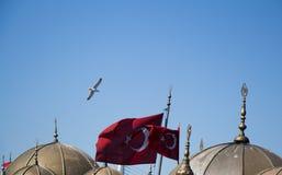 Turecka flaga państowowa i kopuły w widoku Zdjęcia Royalty Free