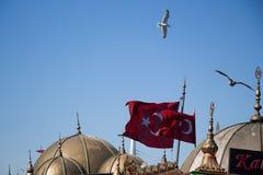 Turecka flaga państowowa i kopuły w widoku Obraz Stock