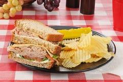 Tureky sandwich Royalty Free Stock Photo