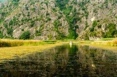 Turen på våtmarken Fotografering för Bildbyråer
