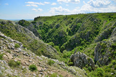 The Tureni Gorge. Stock Images