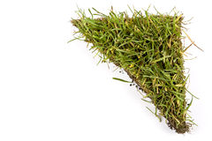 Turf Stock Photo
