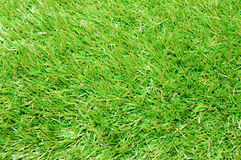 Turf Stock Photos