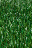 Turf | Artificial grass Royalty Free Stock Photography
