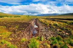 Turf Bog Stock Photography