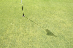 Turf core aeration on green golf. Royalty Free Stock Photography