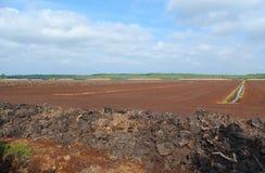 Turf extraction. Royalty Free Stock Photo