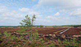 Turf extraction. Stock Photo
