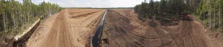Peat field. Panoramic view of treated peat field middle in the forest stock photography