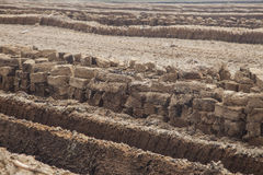 Peat field. Treated turf field with cut peat blocks stock images