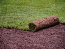 Turf grass roll Royalty Free Stock Image