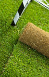 Turf grass roll on sport field - closeup stock photos