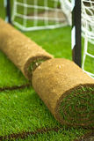 Turf grass rolls on football field Stock Image