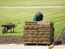 Turf grass rolls Stock Photo