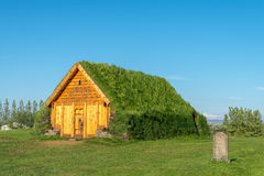 Turf house in Skalholt, Iceland. Royalty Free Stock Images