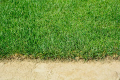 Turf for rolls Stock Photo