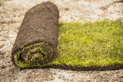 Turf strip Royalty Free Stock Images