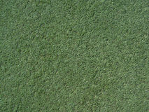 Turf Texture royalty free stock image