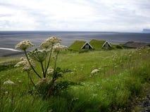 Turfhouses, Islande Image libre de droits