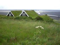 Turfhouses Skaftafell nationalpark, Island Arkivbild