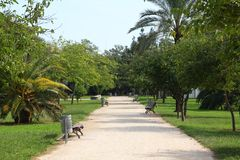 Turia Gardens in Valencia, Spain Stock Photography