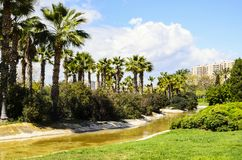 Turia Gardens, Valencia, Spanje Stock Afbeelding
