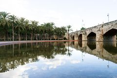 Turia park gardens in the spanish city of Valencia - palm trees and stone bridge reflected in a lake Royalty Free Stock Photos