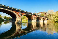 Turin bridge. In the valentine park royalty free stock photos