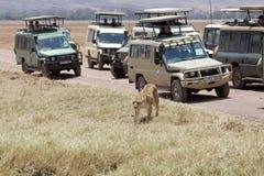 Turismo africano imágenes de archivo libres de regalías